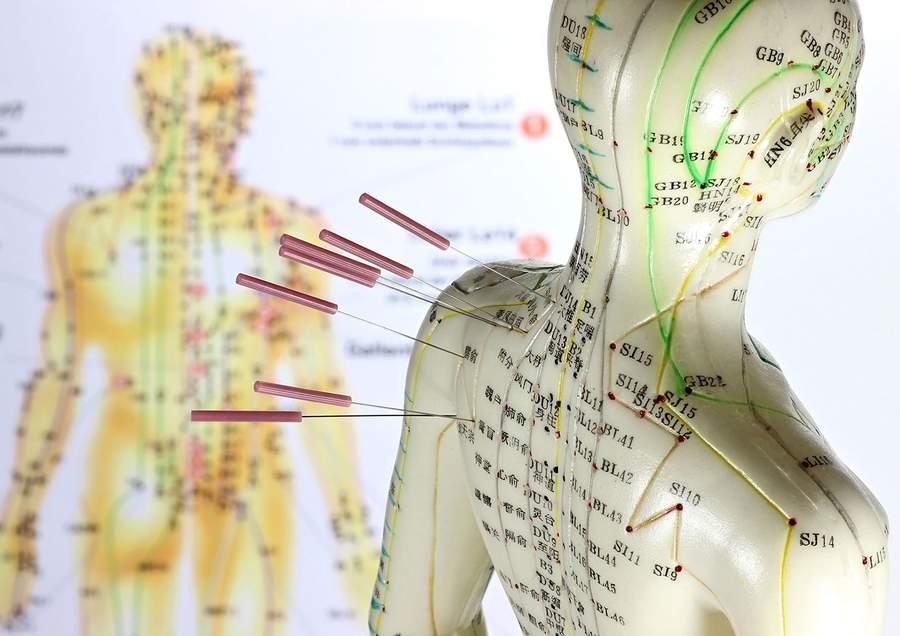 Schön Anatomie Labor Praktische Praxis Ideen - Anatomie Ideen ...